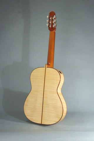 Maple Guitar Back
